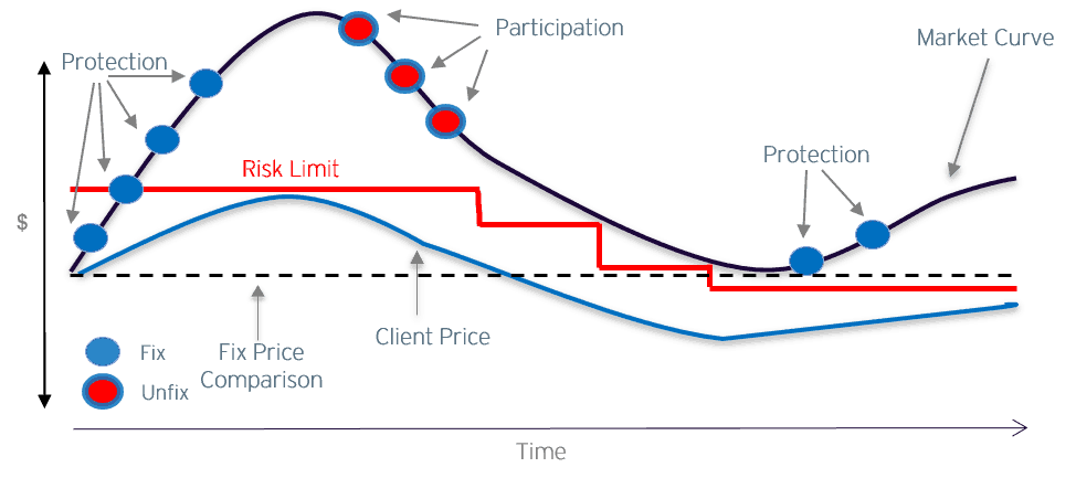 Price-Risk-Management-Example